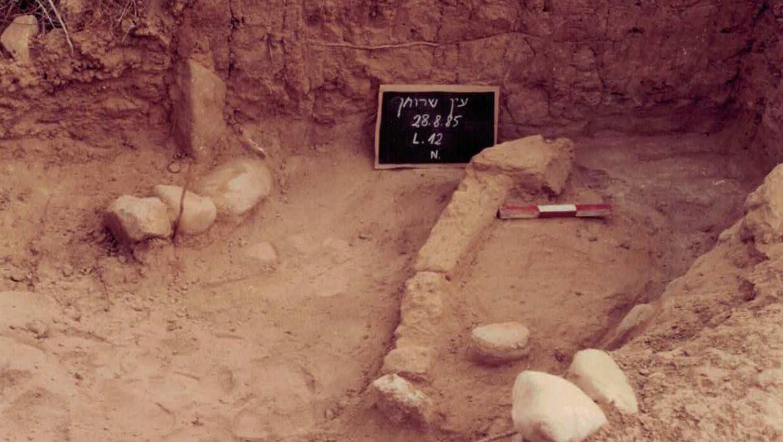 עין שרוחן: אתר מתקופת הברזל הא' בנחל בשור