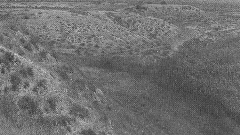 יישוב פרזות מתקופת הברונזה המאוחרת באתר גרר ה': ממצאי סקר