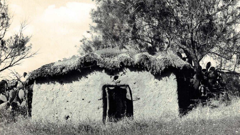 תהליכי התיישבות בחבל הבשור בימי השולטן עבד אלחמיד השני